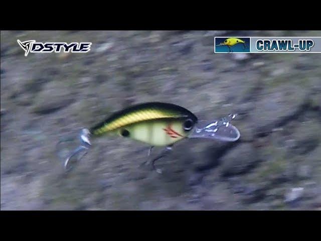 【公式】CRAWL UP水中アクション映像 FULL Ver.