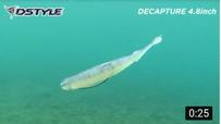 【公式】DCAPTURE4.8インチ 水中映像/圧倒的な生命感
