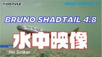 【公式】Bruno Shadtail 4.8インチ 水中映像