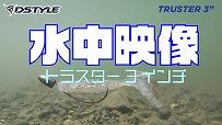 【公式】TRUSTER3インチ 水中映像