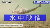 D-Swimmer(ディースイマー) 水中映像