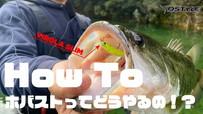 【How To #1】ホバストってどうやるの!? 井上正夫