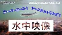 【水中映像】BRUNO SHADTAIL 3.4インチ