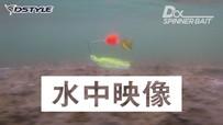 【水中映像】Dα SPINNER BAIT