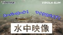 【水中映像】VIROLA SLIM