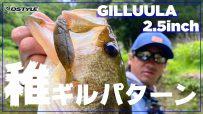 【公式】ギルストが炸裂!?稚ギル食いのバスが狂う/GILLUULA 2.5inch